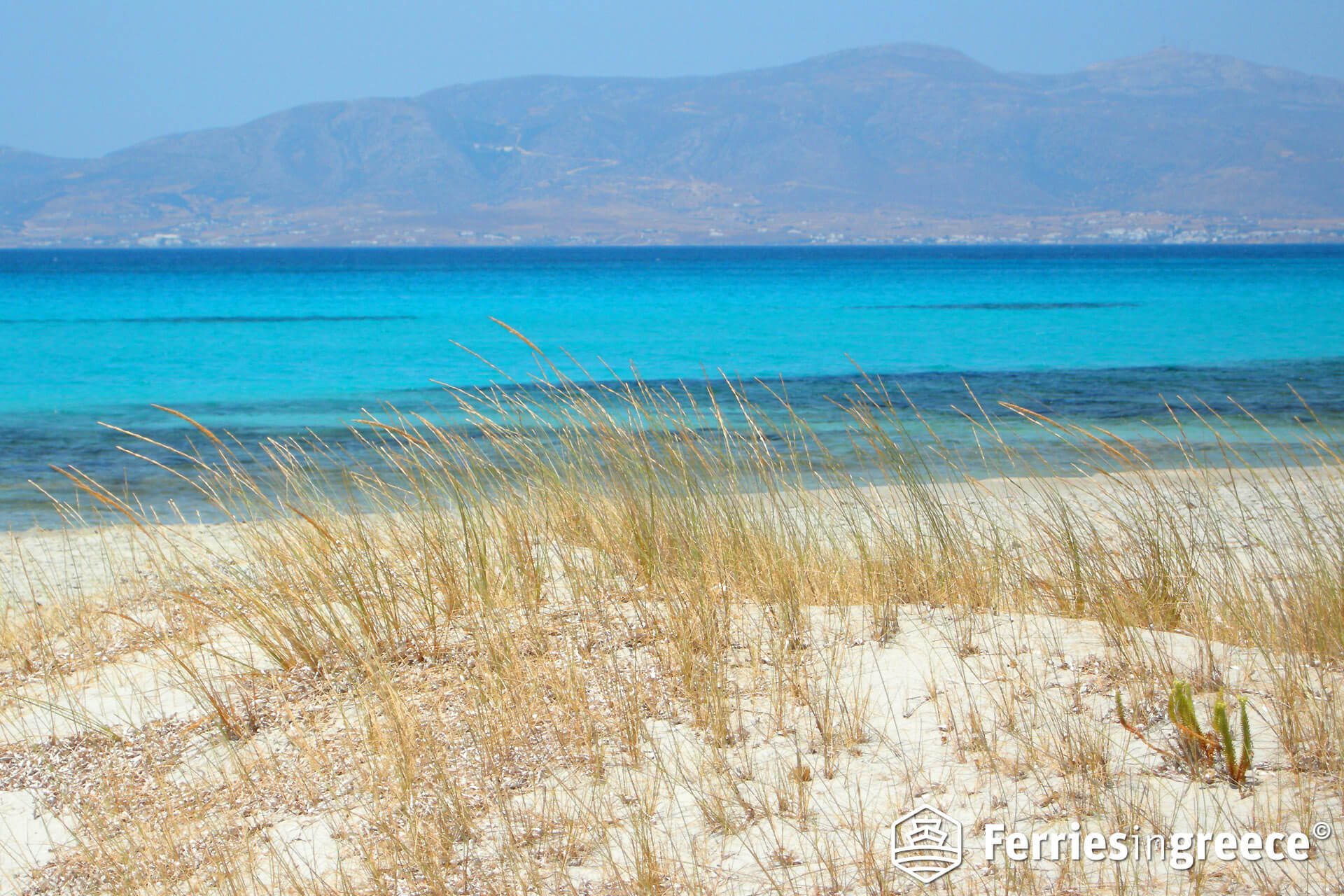 naxos beaches